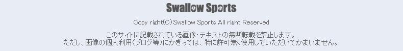 棒球用品專賣店 SwallowSports