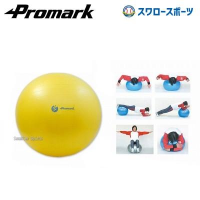 プロマーク バランスボール(レベル1) TPT0251