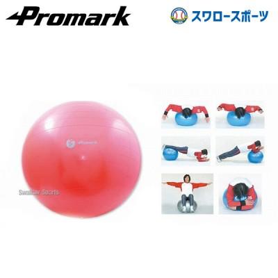プロマーク バランスボール(レベル2) TPT0268