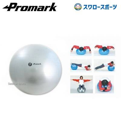 プロマーク バランスボール(レベル4) TPT0275