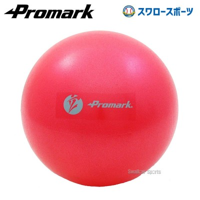 プロマーク ジムボール(レベル2) TPT0282