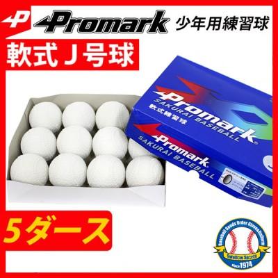 プロマーク 軟式ボール J号球 少年野球 J号 小学生向け 練習球 5ダース セット (1ダース 12個) LB-312J