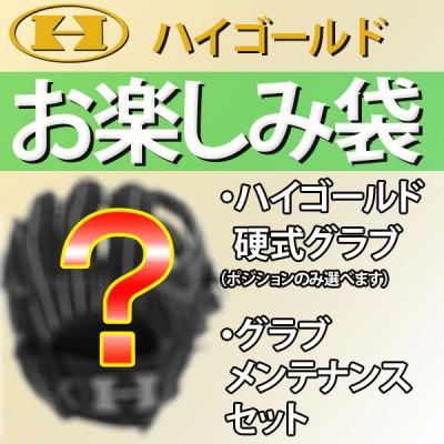 【4.5万円相当】ハイゴールド お楽しみ袋 硬式グローブ+グラブメンテナンスセット